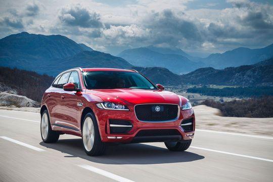 Jaguarovi-terenci-po-povoljnijoj-sajamskoj-ceni-2