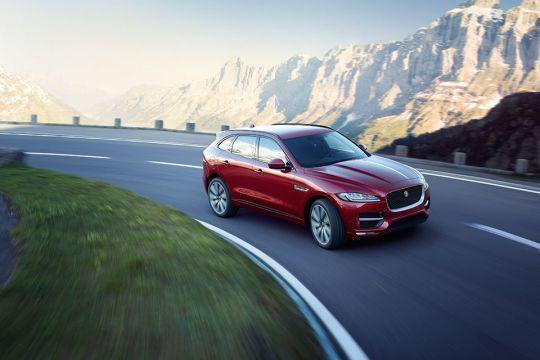 Jaguarovi-terenci-po-povoljnijoj-sajamskoj-ceni-4