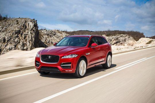 Jaguarovi-terenci-po-povoljnijoj-sajamskoj-ceni-6